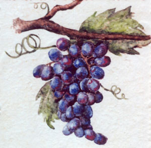 Tile with grapes (c) http://tilesbymimi.com/